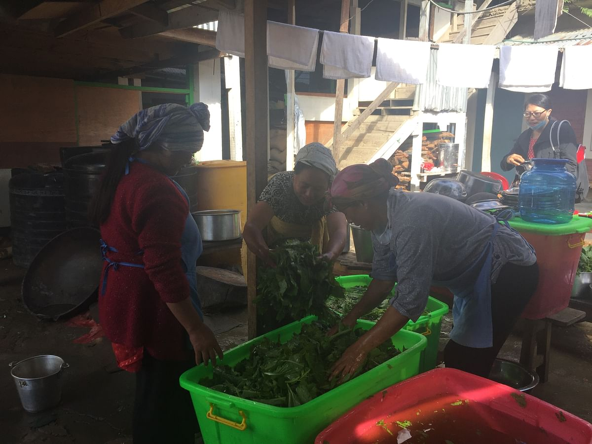 Women washing organic mustard leaves for for the returnees at quarantine centres