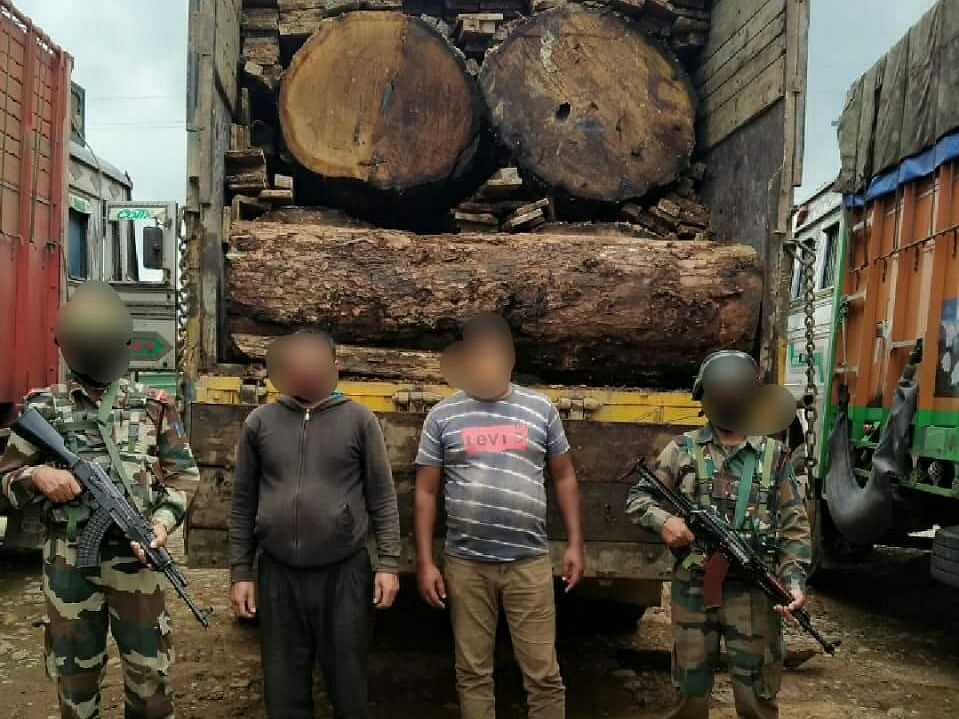 Manipur: Assam Rifles recovers illegal timber worth lakhs
