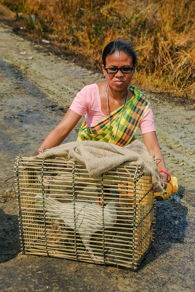 Woman with her poultry also taking part in the evacuation