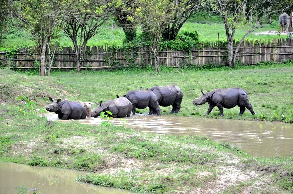 Chief minister Sonowal also visited the Centre for Wildlife Rehabilitation and Conservation (CWRC) at Barjuri near Kaziranga National Park