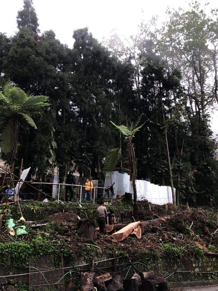 Kailash Pradhan, an architect by profession, had submitted a letter petition to the High Court of Sikkim over the felling of trees in the state capital for the smart city project