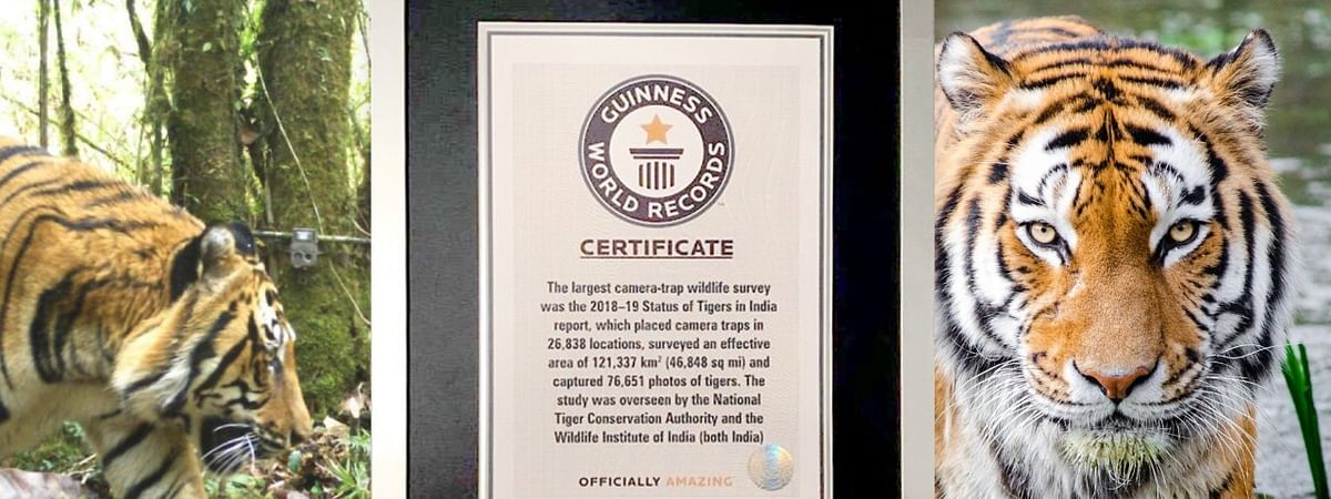 According to the Guinness World Record team, the fourth edition of the census in 2018-2019 was one of the 'most comprehensive' to date