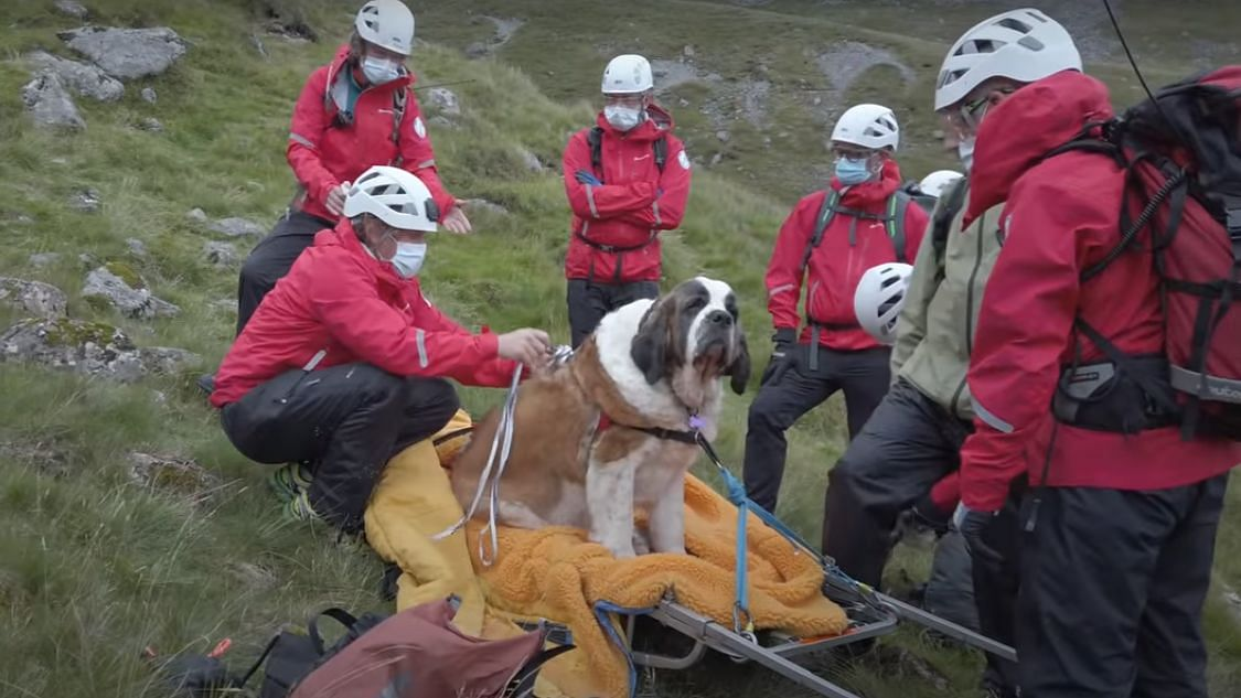 The rescue video was posted on Wasdale Mountain Rescue Team's official Facebook page