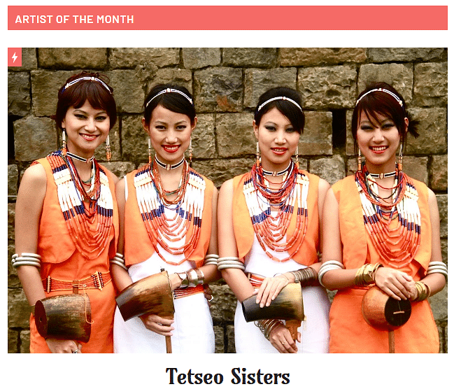 A screen grab of the portal featuring the Tetseo Sisters as 'Artist of the month'