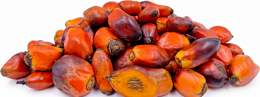 India used to import around two-thirds of Nepal's edible palm oil and was singlehandedly one of their biggest customers for the country palm oil trade.