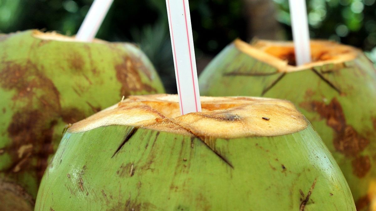 If you make it a point to drink coconut water in an empty stomach, it can give you hydration for the rest of the day