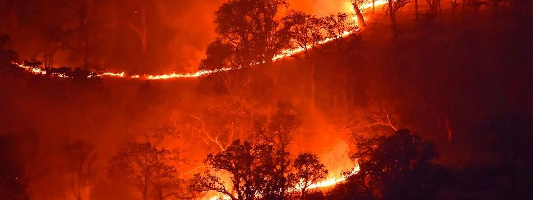 According to recent reports, the wildfires have claimed at least five lives till now