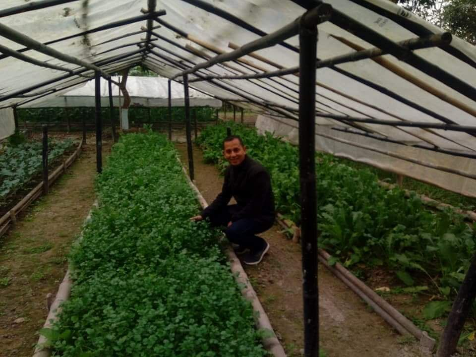 Bordoloi quit his corporate job in 2015 and began his very first Plant Health Clinic called SS Botanicals based in Jorhat