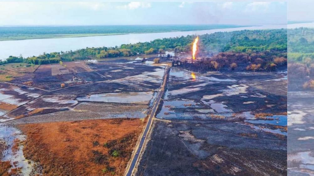 Assam OIL fire: Wildlife institute wants review of eco clearances, reveals RTI