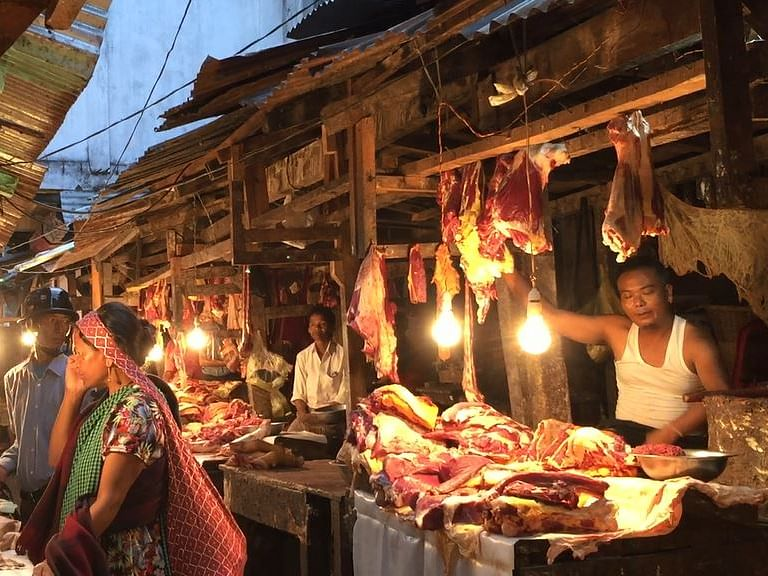 Meghalaya: Is African Swine Fever & Lumpy Skin Disease zoonotic? Find out