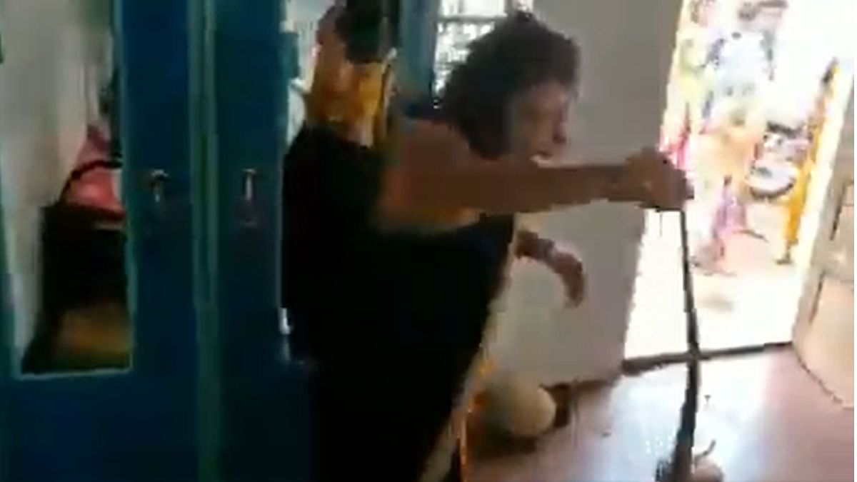 WATCH: Daring video of woman rescuing deadly snake in saree goes viral
