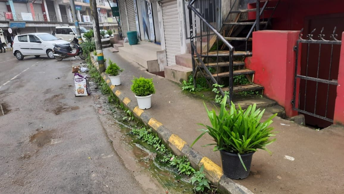 Potted plants in different shapes and sizes placed along a pathway in Kohima