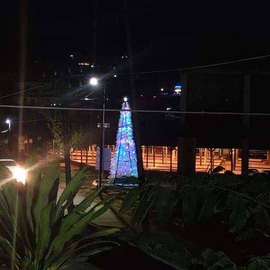 WATCH: Christmas tree erected from 1,000 plastic bottles in Manipur's Chandel district