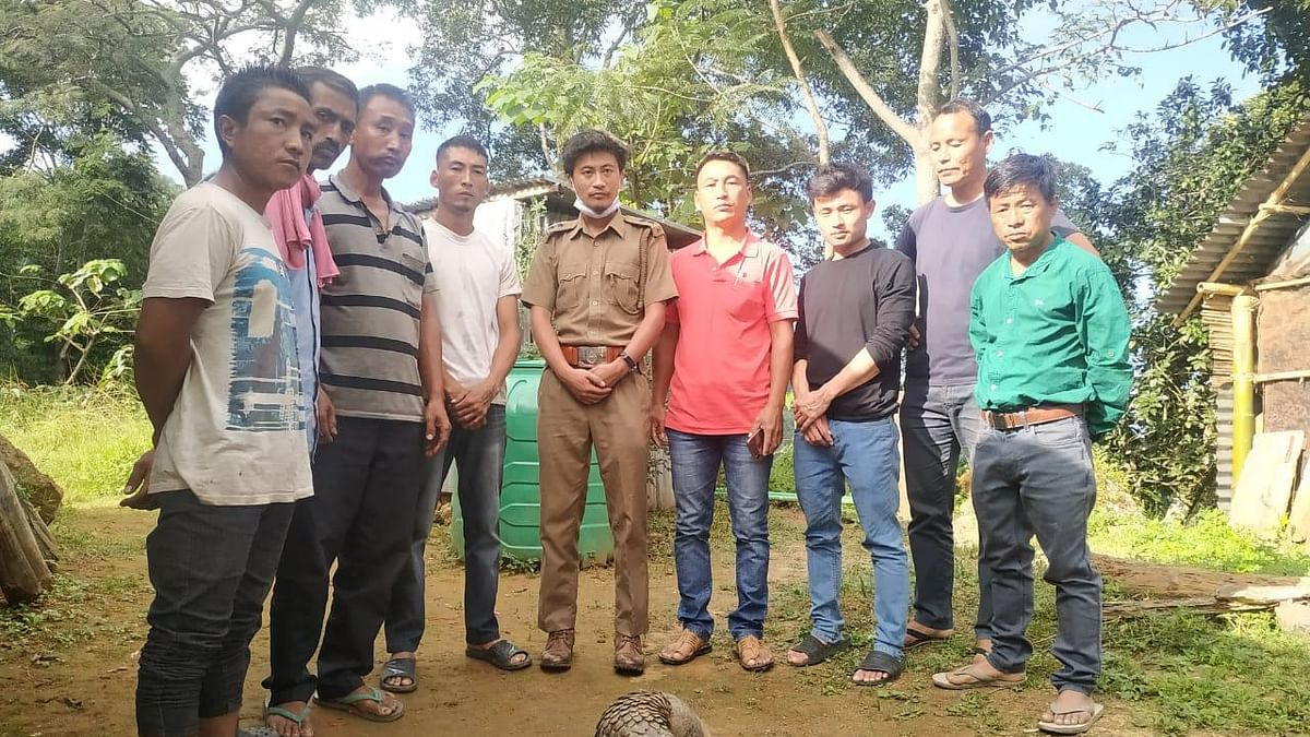 Nagaland: Kohima forest division rescues endangered Indian pangolin
