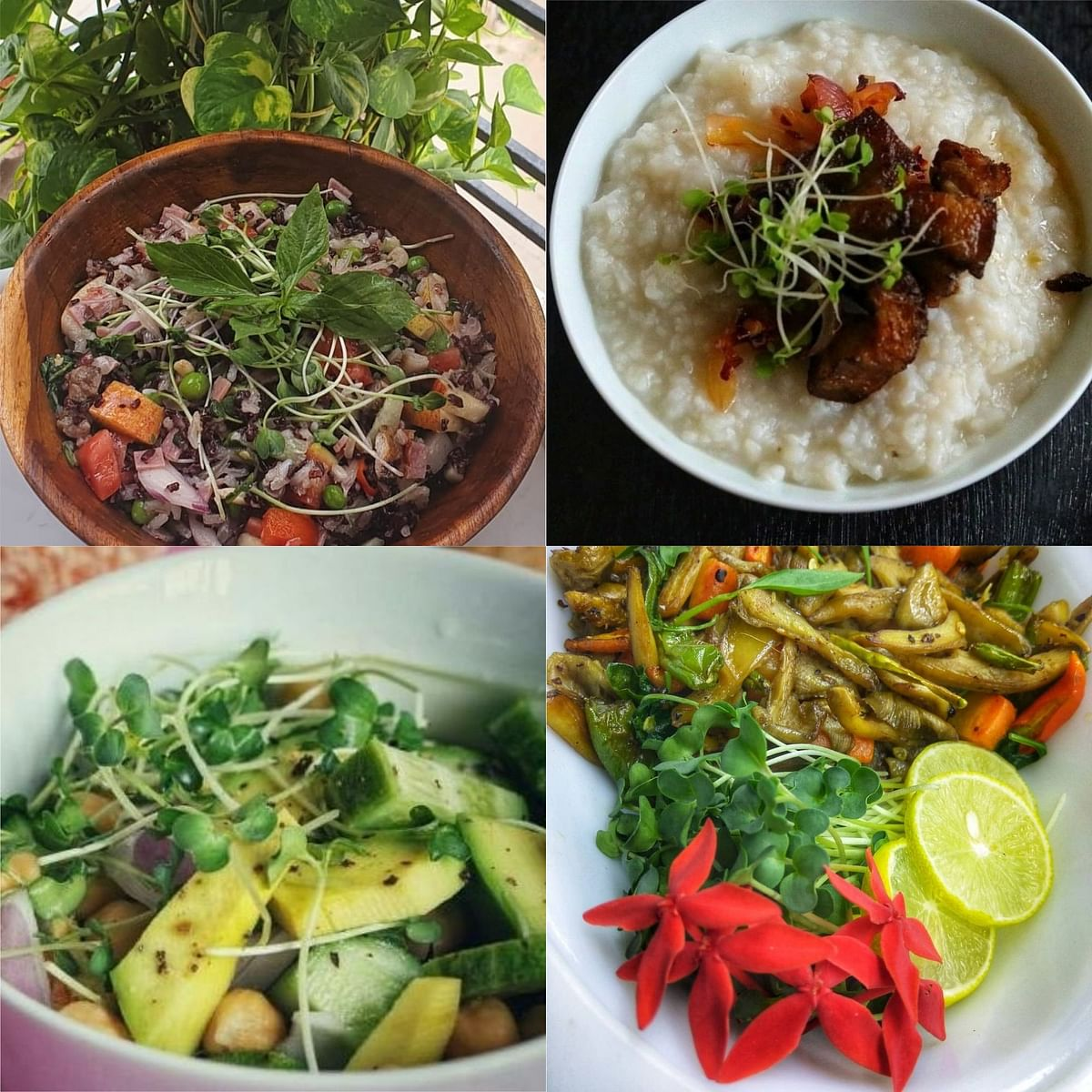 Usage of microgreens  in several dishes