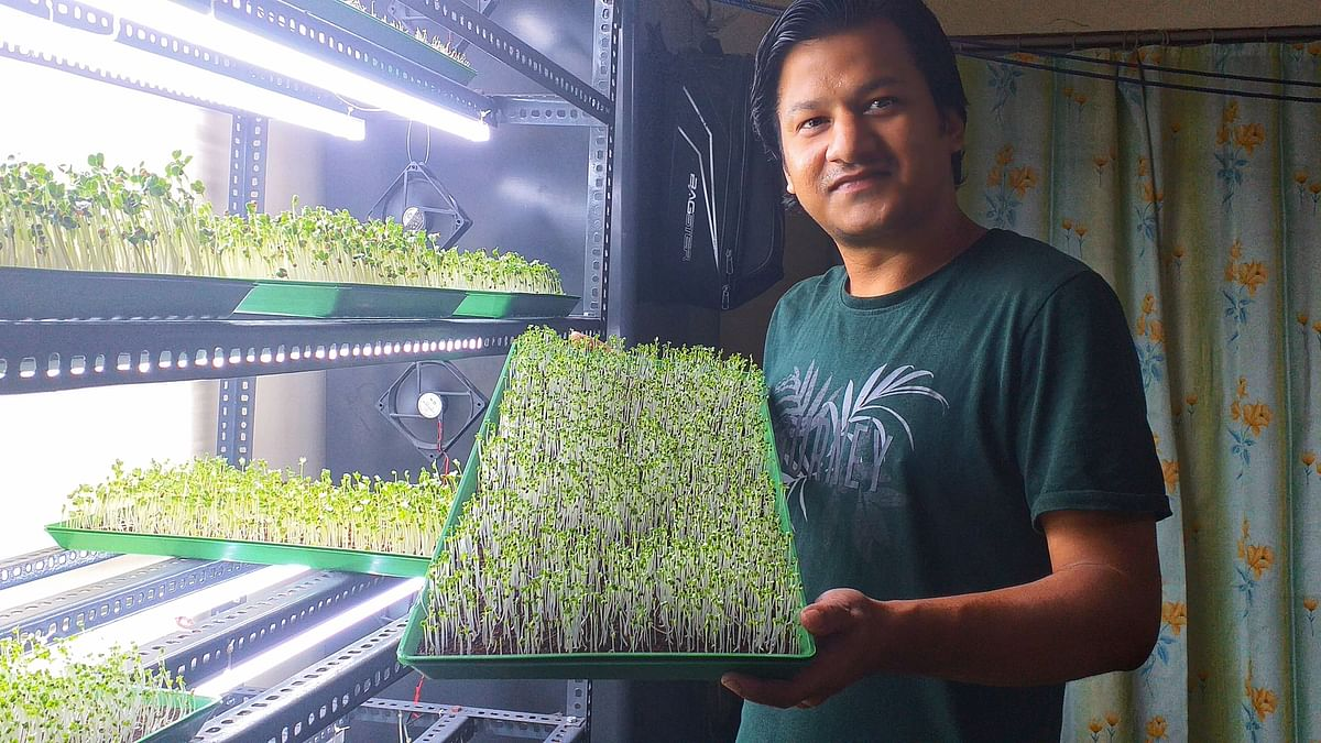This Guwahati farmer is using microgreens to provide unconventional healthcare in Assam