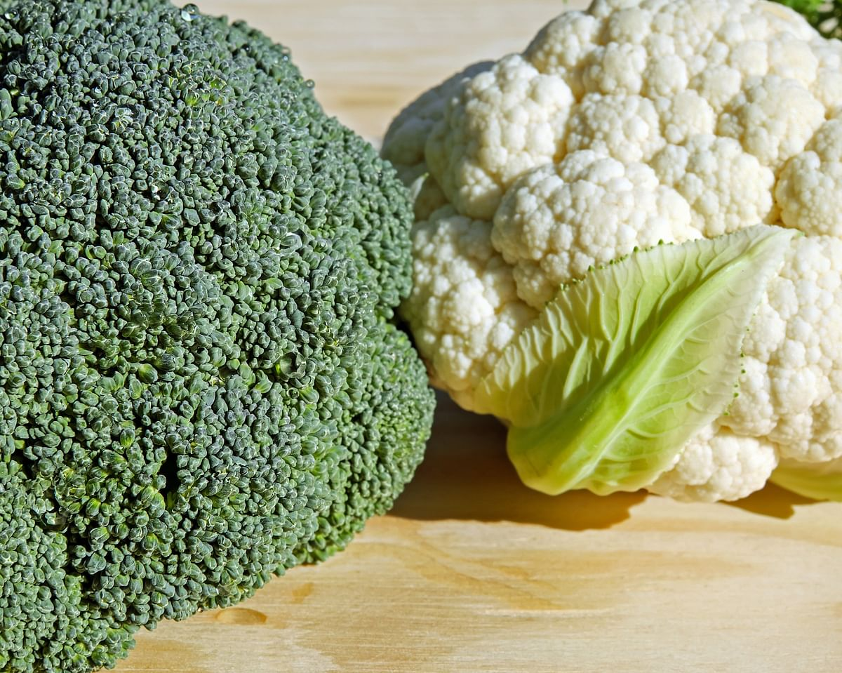 Having them in your everyday diet will keep the flu and other seasonal infections at bay