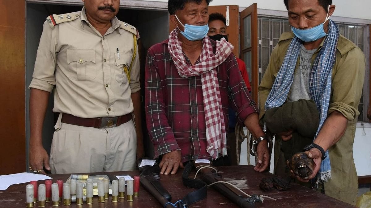 Police recover monkey meat from poachers in Sonapur, Assam
