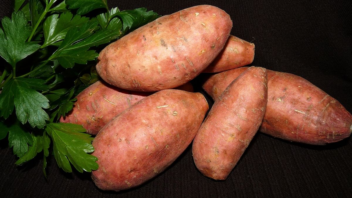 Sweet potatoes can control blood sugar levels and reduce your risk of cancer