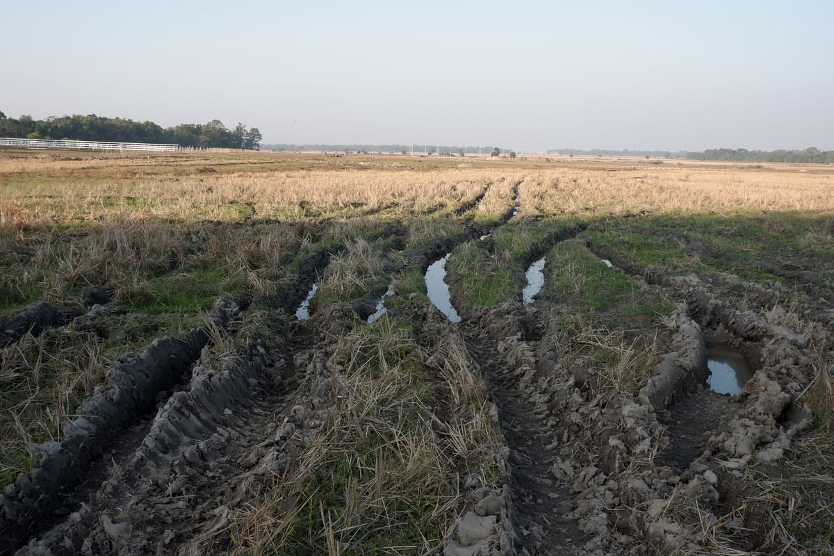 Bulldozers were run over paddy fields damaging ripened crops of the farmers