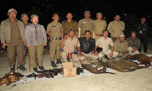 All the seized meat and carcasses were destroyed at Kola Camp near Doimukh by the forest officials