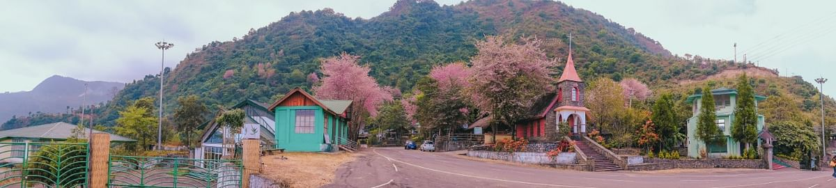 Kisama Heritage Village should have been brimming with tourists coming to the annual Hornbill Festival. But due to the pandemic, the village looked deserted. But the cherry blossom in full bloom and the almost-eerie silence transformed the village into a scene right out of a fairy tale