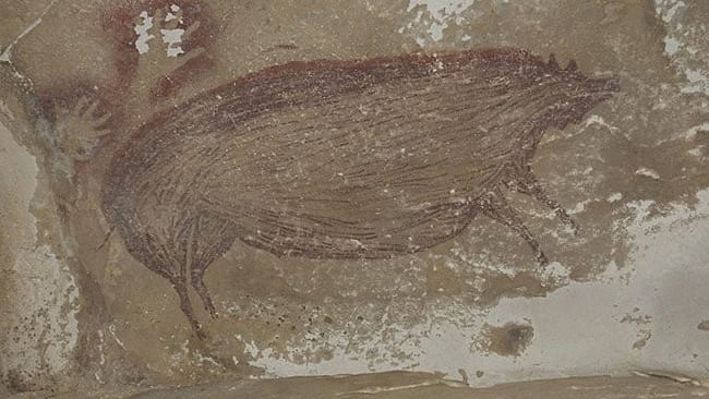 Warty pig: World's oldest-known cave painting found