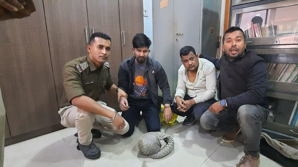 Guwahati tattoo artist among two arrested for wildlife trafficking