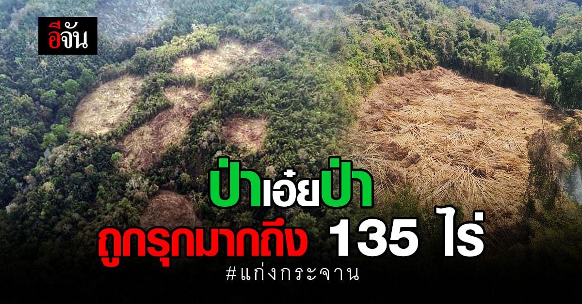 บินสำรวจ ป่าแก่งกระจาน พบถูกถาง - เผา มากถึง 135 ไร่
