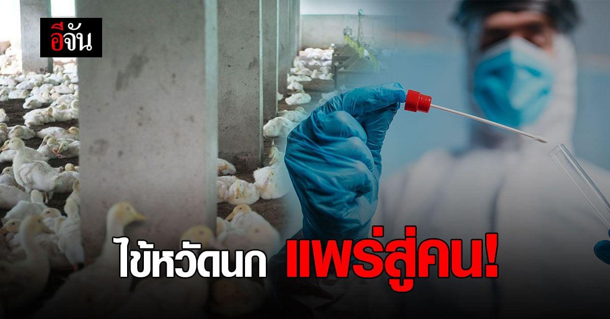 ครั้งแรกของโลก! รัสเซียพบผู้ติดเชื้อ ไข้หวัดนก H5N8