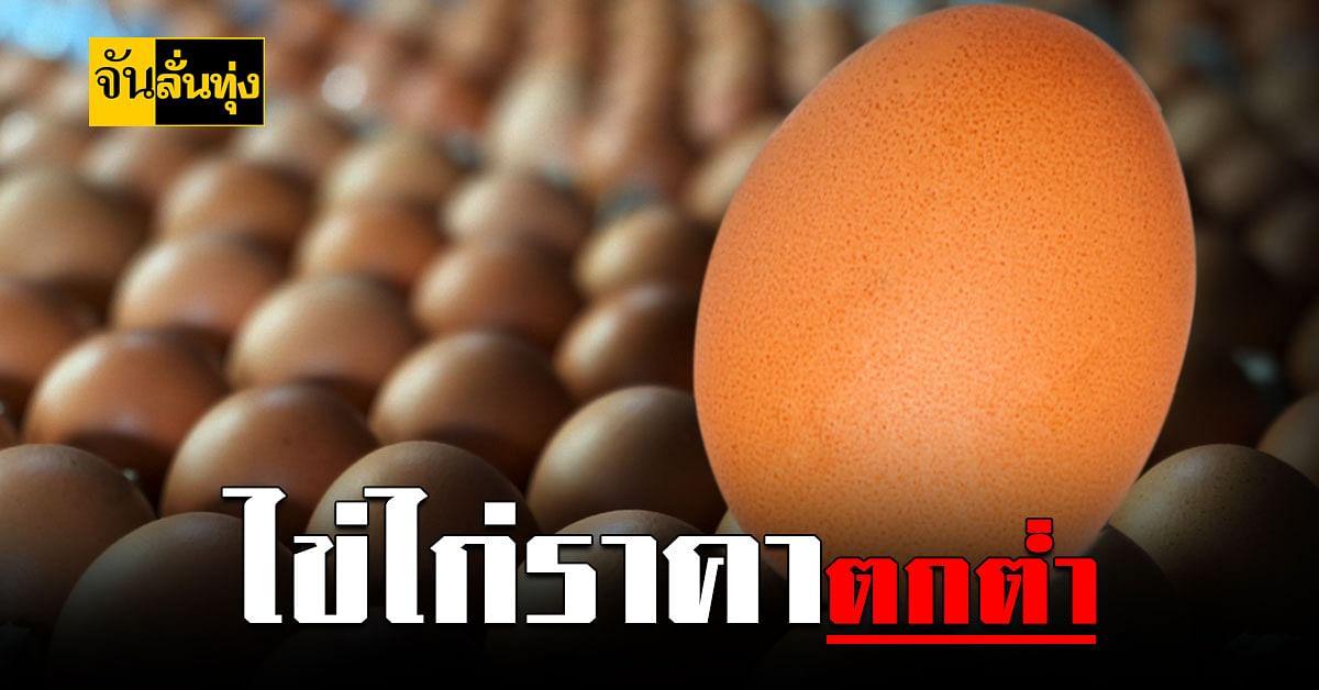กระทรวงเกษตรฯ เร่งแก้ไขปัญหา ไข่ไก่ ราคาตกต่ำ