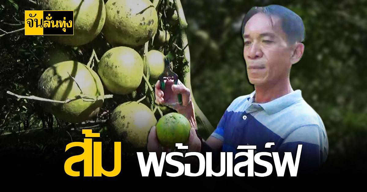 เกษตรกรตรัง ปรับตัวช่วงตรุษจีน ขายส้มออนไลน์ ขยายตลาด สู้โควิด