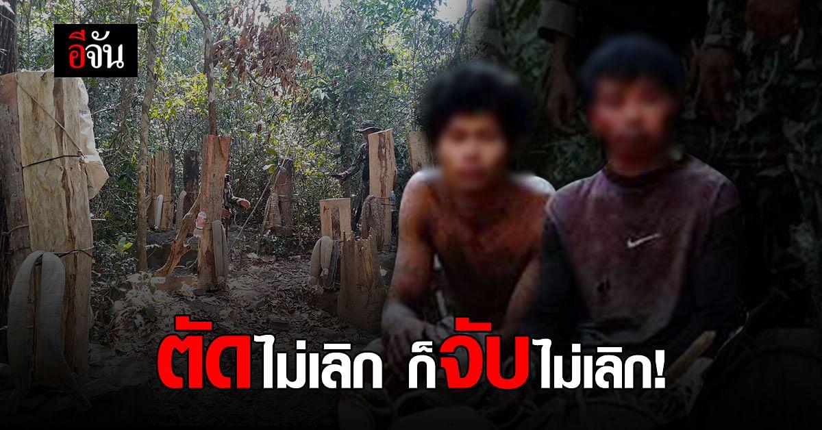 สมาร์ทพาโทรล จับ 2 ชาวกัมพูชา ลอบขนไม้ประดู่แปรรูปข้ามประเทศ