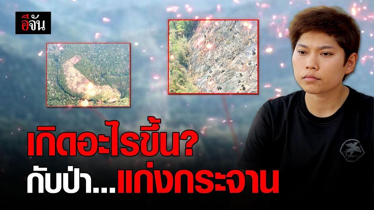 (Video) เกิดอะไรขึ้นกับป่าแก่งกระจาน?