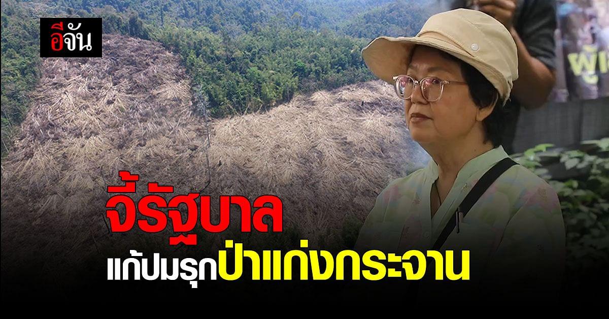สมาคมอุทยานแห่งชาติ ยื่นข้อเรียกร้องให้ รัฐบาล แก้ปัญหา ป่าแก่งกระจาน ถูกบุกรุก