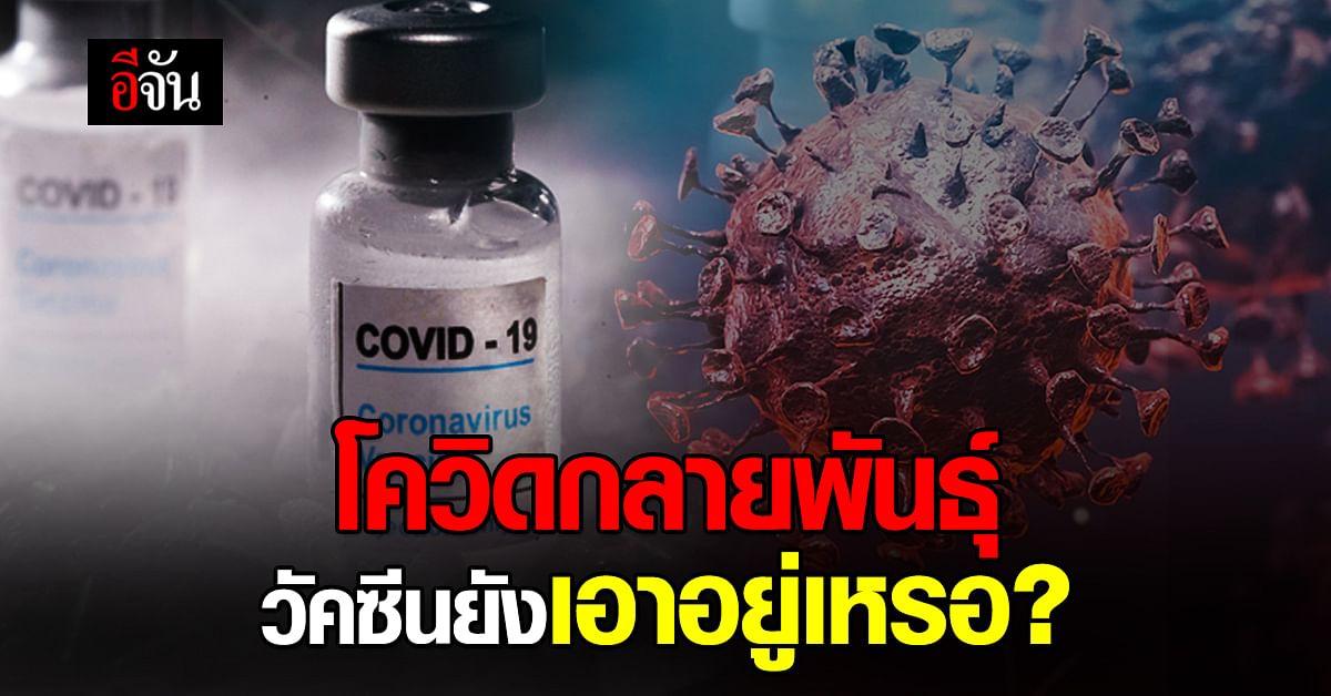 หมอยง ไขข้อสงสัย โควิดกลายพันธุ์ วัคซีน ยังเอาอยู่เหรอ?
