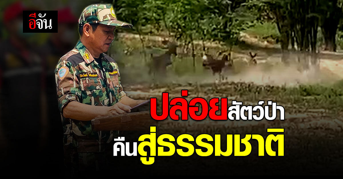 """สัตว์ป่าต้องอยู่ในป่า! เขตรักษาพันธุ์สัตว์ป่าภูสีฐาน เปิดโครงการ """"ส่งสัตว์คืนวนา เพื่อป่าสมบูรณ์"""""""