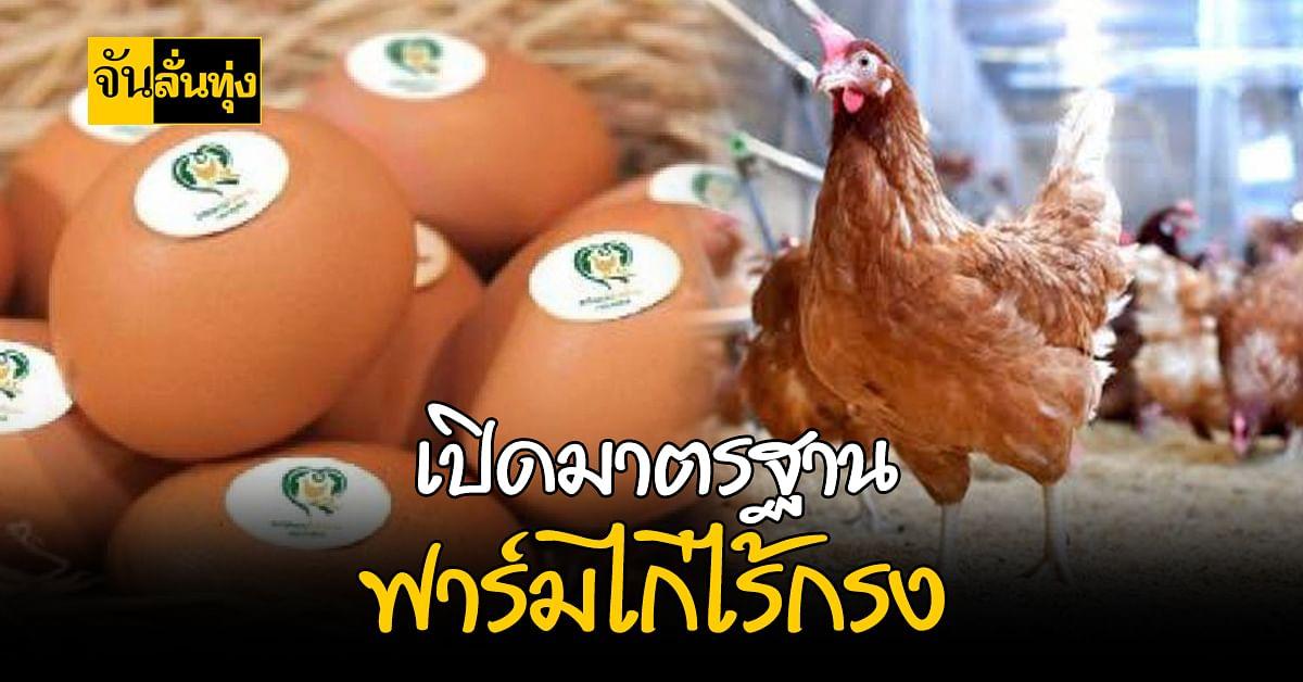 กรมปศุสัตว์ รับรองฟาร์มไก่ไข่แบบไม่ใช้กรง ให้ประชาชนมั่นใจก่อนบริโภค