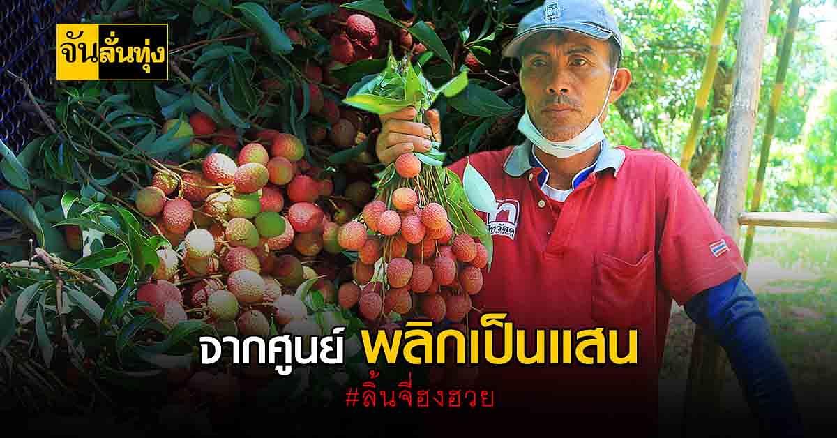 เกษตรกรพะเยาดี๊ด๊า ราคา ลิ้นจี่ฮงฮวย ของดีท้องถิ่นขายดีมากจนเก็บขายไม่ทัน