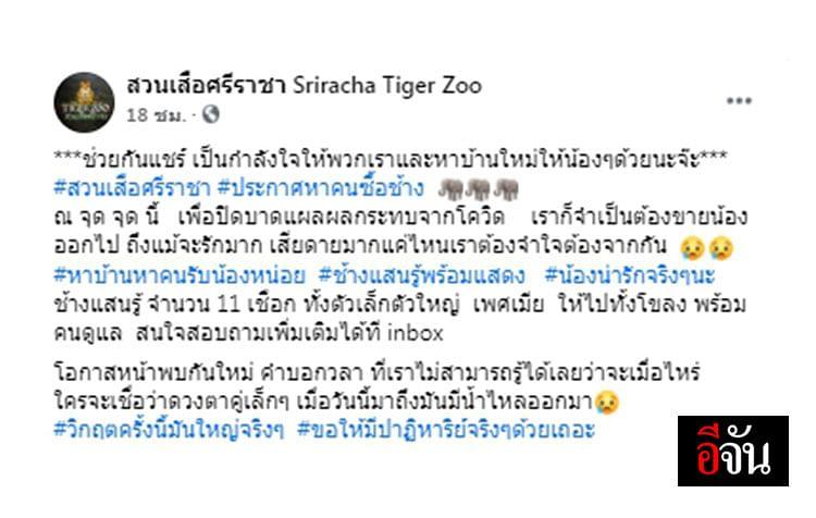 โพสข้อความล่าสุดของ สวนเสือศรีราชา Sriracha Tiger Zoo