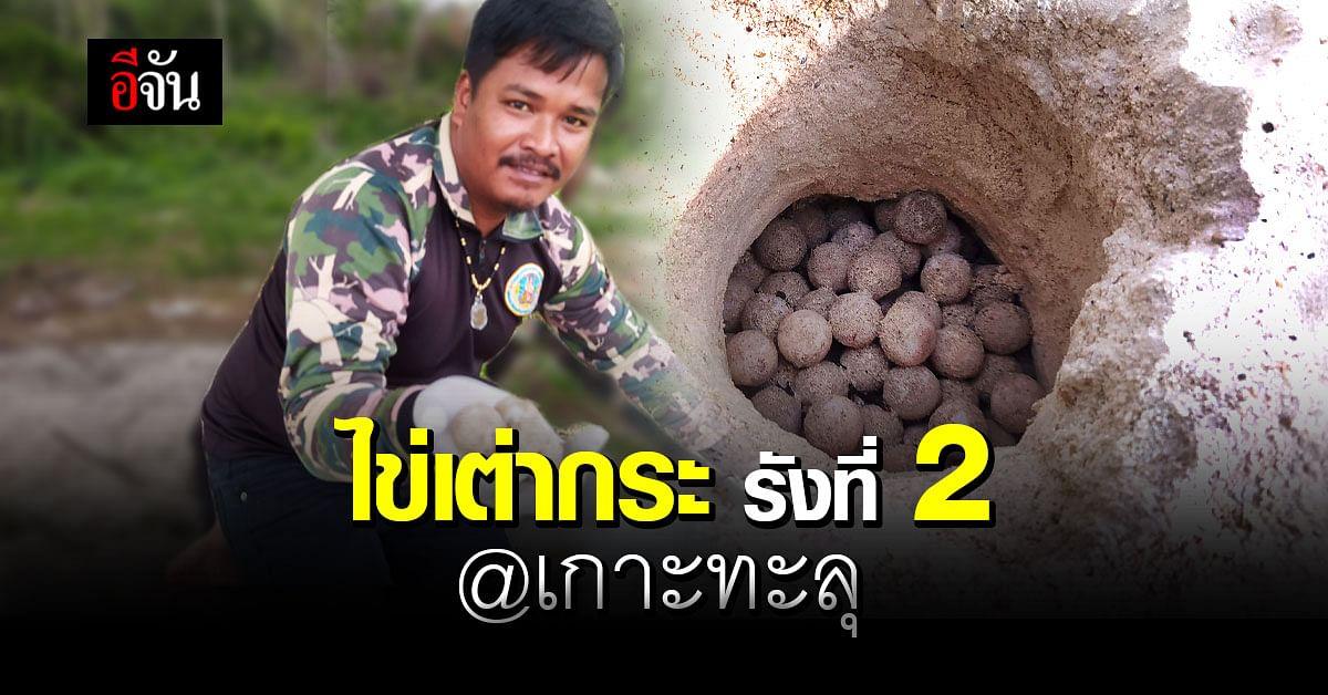 อุทยานแห่งชาติอ่าวสยาม พบ เต่ากระ ขึ้นมาวางไข่เป็นรังที่ 2 บน เกาะทะลุ
