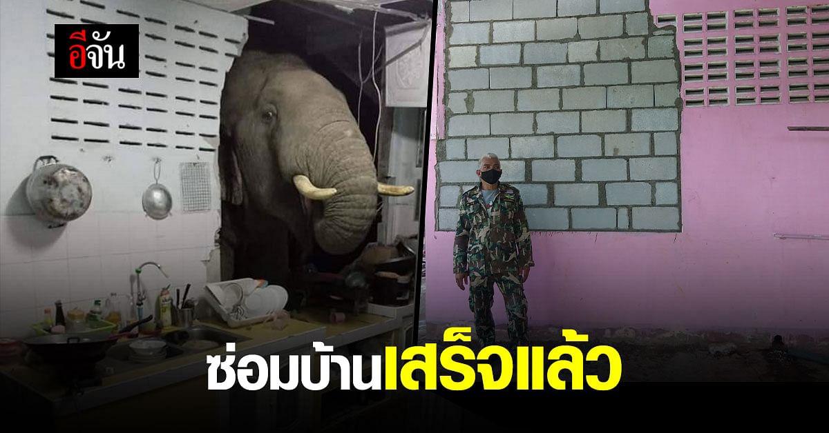 (Video) ช้างป่าหิวโซ บุกพังบ้านซ้ำ!