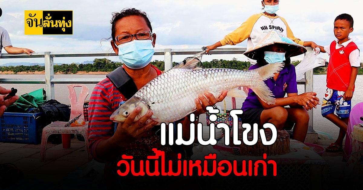 ชาวประมงโอด แม่น้ำโขง ผันผวน ใกล้วิกฤต น้ำลด หากินยาก ปลาใกล้สูญพันธุ์