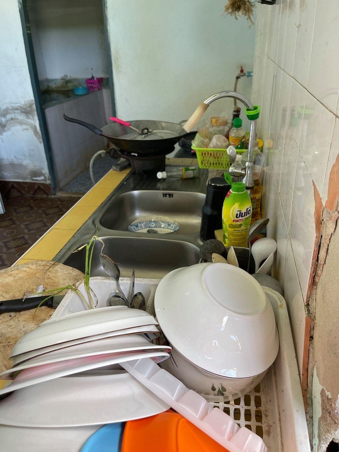 ห้องครัวที่ช้างป่าโผล่เข้ามา
