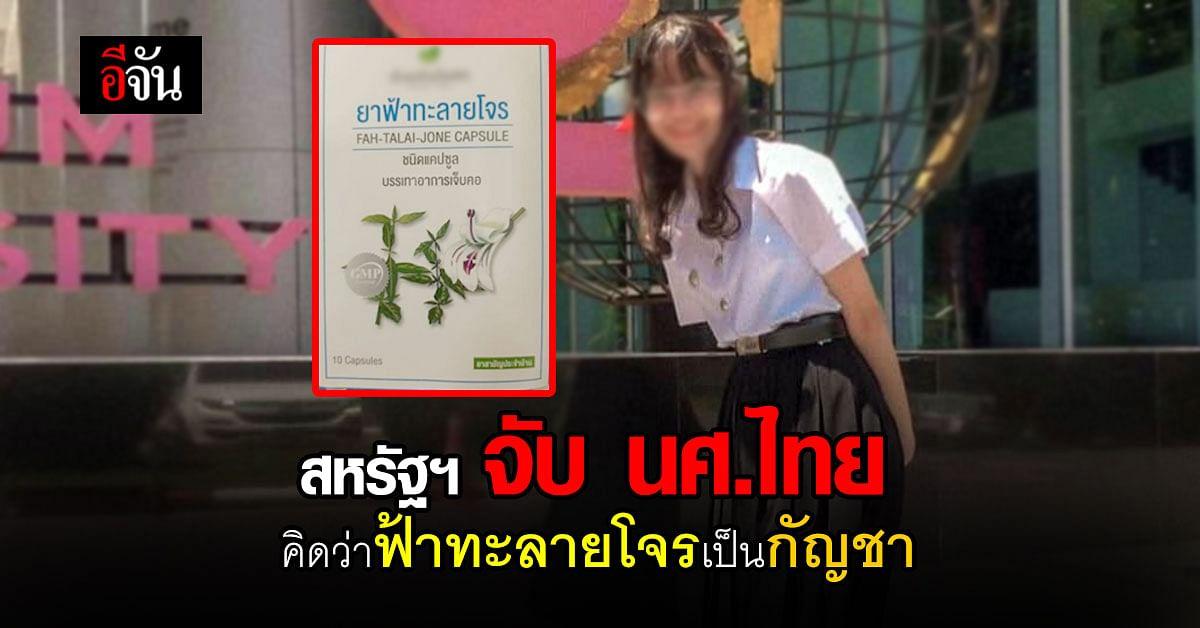 นักศึกษาไทย โดนจับ ที่ สหรัฐอเมริกา เพราะ ยาฟ้าทะลายโจร