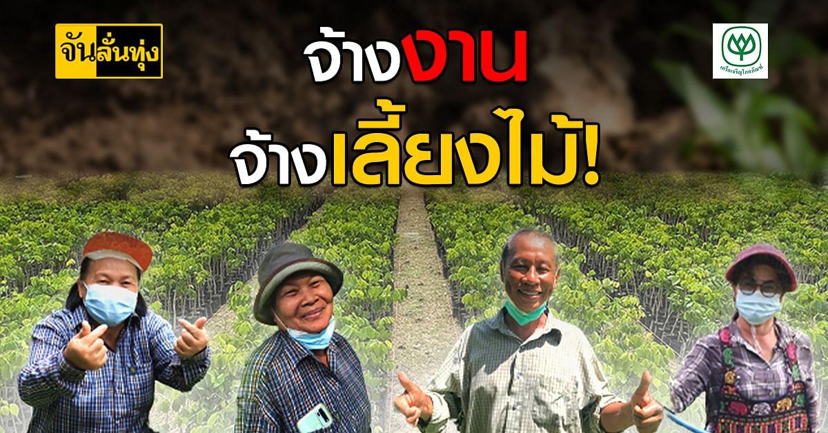 ซีพี ชวนเกษตรกรชลบุรีเข้าโครงการ จ้างงานเลี้ยงกล้าไม้ สร้างรายได้