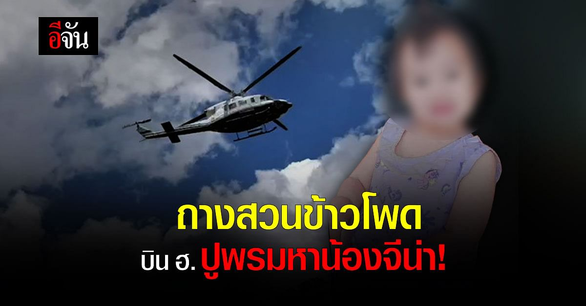 ตำรวจเปลี่ยนเเผน ค้นหาน้องจีน่า ถางสวนข้าวโพด บิน ฮ.