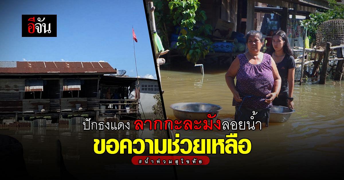 (Video) นาทีระทึก! รถโรงครัว ลุงอู๊ดอีจัน หวิดคว่ำกลางน้ำท่วมสุโขทัย