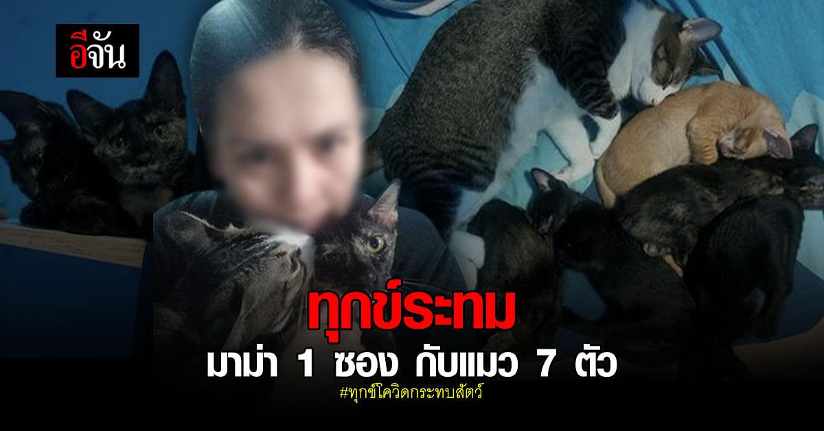 สาวร้องอีจัน โควิดทำทุกข์ เหลือมาม่า 1 ซอง กับแมว 7 ตัว