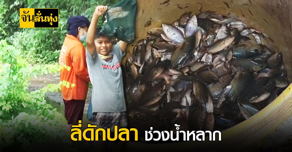 ช่วงนี้ไทยน้ำหลาก ชาวบ้านโคราช ทำลี่มาดักปลา หารายได้